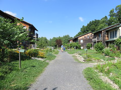 IMG_5694-081116 (octoberblue13) Tags: ithaca ny ecovillage