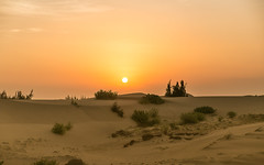 Sunrise on the Sand Dunes (trai_thang1211) Tags: phanrang vietnam sunrise outdoor landscape sky sunset