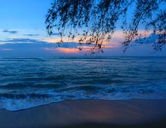 Beach sunset (little_duckie) Tags: lasterrenas republicadominicana dominicanrepublic saltoellimon ellimon cascada waterfall beach laplaya playa laplayalasballenas