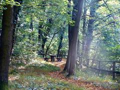 2016 Germany // Burgensteig Bergstrae // (maerzbecher-Deutschland zu Fuss) Tags: 2016 burgensteig bergstrasse bergstrase wanderweg wandern natur deutschland germany trail wanderwege maerzbecher deutschlandzufuss hiking trekking weitwanderweg fernwanderweg deutschlandzufus badenwrttemberg