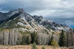 Montaas Rocosas (robertopastor) Tags: alberta amrica canada canadianrockiesmountain canad fuji montaasrocosas robertopastor viaje xt2 xf1655mm