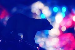 Go Cubs Go (Caroline.32) Tags: macromondays macro backlit cubs silhouette bear nikond3200 18140mmlens extensiontube20mm