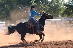On the Fly (Get The Flick) Tags: rodeo cowgirl polebending dust cowboy horse