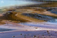 Grand Prismatic Spring (paolo.gislimberti) Tags: parchinazionali nationalparks yellowstonenp parcodiyellowstone meteturistiche touristdestinations paesaggi landscapes geology geologia reflections riflessi depositicalcarei calcareousdeposits sorgenticalde hotsprings