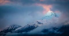 Out from the Clouds (Stee65) Tags: natura rosa svizzera fiori paesaggi montagna luce sera bellinzonese pizzodiclaro ticino luogo soggetto vetta panorama tramonto nubi nascosto landscape paesaggio coperto colori tipo nuvole cima alpi nebbia