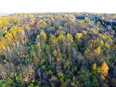 Colors of Chauncey (John Rothwell) Tags: n kent county michigan fall nature colors drone arial farm chauncy