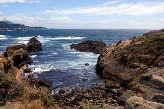 068-point lobos- (danvartanian) Tags: california pointlobos nature landscape