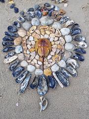 Mandela (pagodabob) Tags: mandela sea shells beach art corolla northcaralina outerbanks