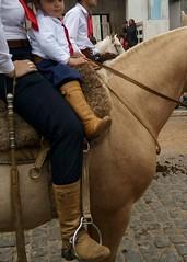Gaúchos (Darlan Corral) Tags: gaúchos tradição farroupilha cavalo