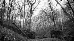 in the deep woods.... (BillsExplorations) Tags: castle stronghold strongholdcastle retreatcenter presbyterian woods forest entrance gate stone abandoned forgotten decay ruins old medival oregon illinois