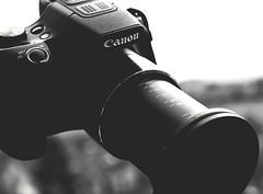 My gear - recent Canon PowerShot SX60HS Bridgecamera - but no rumors (eagle1effi) Tags: gear mygear sx60 d5100 nikon