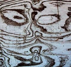 Plywood Face (Sandy*S) Tags: sandhills nebraska face plywood wood stuart