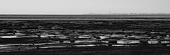 Distant Blackpool (JamieHaugh) Tags: liverpool southport blackpool outdoor outdoors england beach sea shore coast blackandwhite blackwhite monochrome