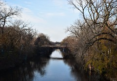 without (marensr) Tags: trees branches bare chicago river train bridge nature blue sky autumn fall reflection