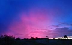 A qualcuno lass  esploso il barattolo del colore rosa (Cristina Birri) Tags: tramonto sunset rosa rose palmanova friuli udine autunno autumn