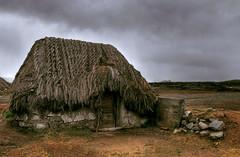 Ecuador Highlands Choza (Len Langevin) Tags: southamerica landscape ecuador nikon choza grassroof chimborazo d300 indigenousarchitecture