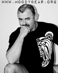Half-bear (GQ Gallery) Tags: bear gay tattoo design michael tshirt moodybear