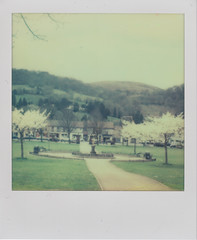 Tredegar Park (L. McG.-E.) Tags: film polaroid sx70 instant analogue px70 impossibleproject colorprotection