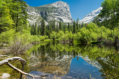 Yosemite National Park (Bridgeport Mike) Tags: park blue trees sky people lake tree nature water pine reflections landscape mirror branch national yosemite dome half dsc00506