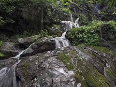 IMGPG15645 - Great Smoky Mountains National Park - Place of a Thousand Drips (David L. Black) Tags: nationalparks greatsmokymountainsnationalpark