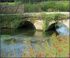 Picturesque bridge at Bibury (pefkosmad) Tags: bridge water river village cotswolds gloucestershire bibury