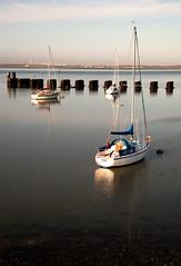 Jo-Jo (Seascape snapper) Tags: sea sky water yacht langstoneharbour
