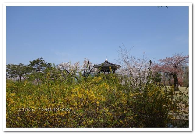 일산호수공원49