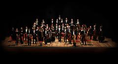 Foto PAGINA 11 Orchestra ritoccata da te!