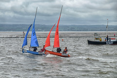 The Wilson Trophy (Steev McAlister) Tags: nature ecology marina boats scenery sailing transport racing transportation environment environmentalism watercraft ecosystem watertransportation