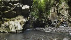 - Bras de la Plaine - (Frog 974) Tags: panorama nature de la ngc rivire bras plaine sauvage ledelarunion entredeux
