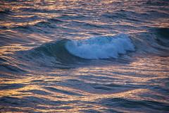 Waves at Sunset - Laguna Beach, CA (ChrisGoldNY) Tags: ocean light waves forsale wave albumcover bookcover bookcovers lagunabeach albumcovers licensing chrisgoldny chrisgoldberg chrisgold chrisgoldphoto chrisgoldphotos