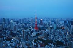 Tokyo Tower (mrjoshstewart) Tags: tower japan tokyo nikon hd highdef
