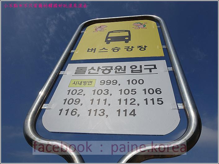 麗水海上纜車與紫山公園 (3).JPG