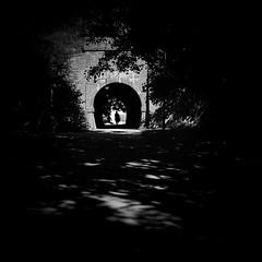 underpass (dougfot) Tags: 1125 160asa 24aug16 6x6 75mm bletchley dpb5b denbighway kodak mf portra rolleicord colour douggoldsmith f16 film shadows underpass