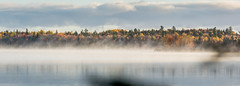 Autumn Colours Behind A Misty Lake (James P. Mann) Tags: autumn colors colours fall mist misty lake reservoir new brunswick water trees forest