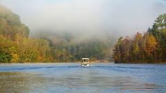 Hunting for Eagles (jmhutnik) Tags: lake pontoon boat water trees autumn wake deweylake kentucky prestonsburg jennywileyresortstatepark october fog mist morning leadinglines color leaves