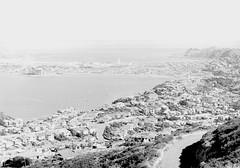 16; Elevated view of Evans Bay and Kilbirnie - Circa 1940 (Wellington City Council) Tags: wellington historicwellington 1800s 1900s 1950s