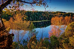 Eivindsvatnet, Norway (Vest der ute) Tags: g7x norway rogaland haugesund waterscape autumn trees water landscape reflections fav25 fav200