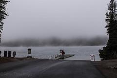 untitled-1 (eenerf) Tags: wyoming yellowstonepark landscape naturalbeauty nature lewislake fog foggymorning