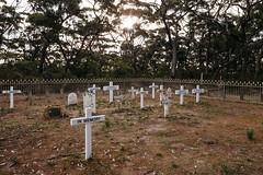 Harvey's Return Cemetery (mezuni) Tags: capeborda southaustralia australia au kangarooisland authenticki visitsa ki