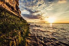 295/366 (romainjacques17) Tags: canon 6d 365 365project project365 picoftheday sunset pont bridge 1635mm ef1635mmf4 larochelle france sea seascape paysage