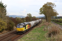 60056 - Dunning, Perth (Andrew Edkins) Tags: 60056 colasrail class60 tug dunning perth freighttrain locomotive scotland october uk innerdunningfarm canon diesel geotagged 2016 afternoon winter tree railwayphotography mainline landscape