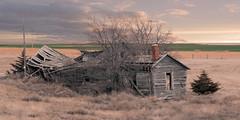 Crumbling In Kansas (nikons4me) Tags: kansas ks old crumbling house abandoned decay decaying nikond7100 nikonafsdx18200mmf3556gifedvr overgrown oncewashome