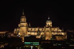 Salamanca (hequebaeza) Tags: salamanca castillaylen espaa spain noche night catedral cathedral 55200mm nikon d5100 nikond5100 hequebaeza