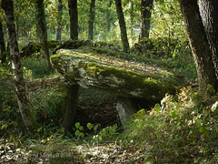 Dolmen de Combe de Pouy (AJ Mitchell) Tags: neolithic bronzeage prehistoric tumulus dolmen megalith rural field tree neoltico nolithique