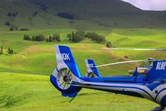 Blue Hawaiian Helicopter Tails (milepost430media.com) Tags: helicopter bluehawaii hawaii blue field volcano tour flight aircraft rotors blades tourism wailea haleakala green grass pasture 70d dslr paradise