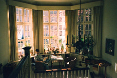 Freud Museum - view from Landing (oh it's amanda) Tags: london londonengland uk pentaxespiomini pentaxuc1 fujisensia200 xpro crossprocessed expiredfilm freudmuseum