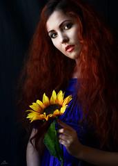 Caitlin and the sunflower (sengsta) Tags: advancephotographytechniques portrait venturephotographyworkshops workshop model flower bluedress
