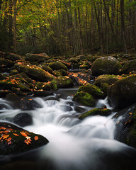Little River (Brian Truono Photography) Tags: greatsmokymountainsnationalpark middlepronglittleriver nps nationalpark nationalparkservice smokymountains tennessee tremont autumn cascade color fall falls flow geology green landscape leaf leaves longexposure moss motion mountains natural nature orange prong red river rock rocks stone stream travel trees valley water waterfall yellow