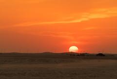 Golden set! (aliffc3) Tags: goldenhour sunset mesaieed qatar nature travel tourism adventure nikond750 nikon70200f4